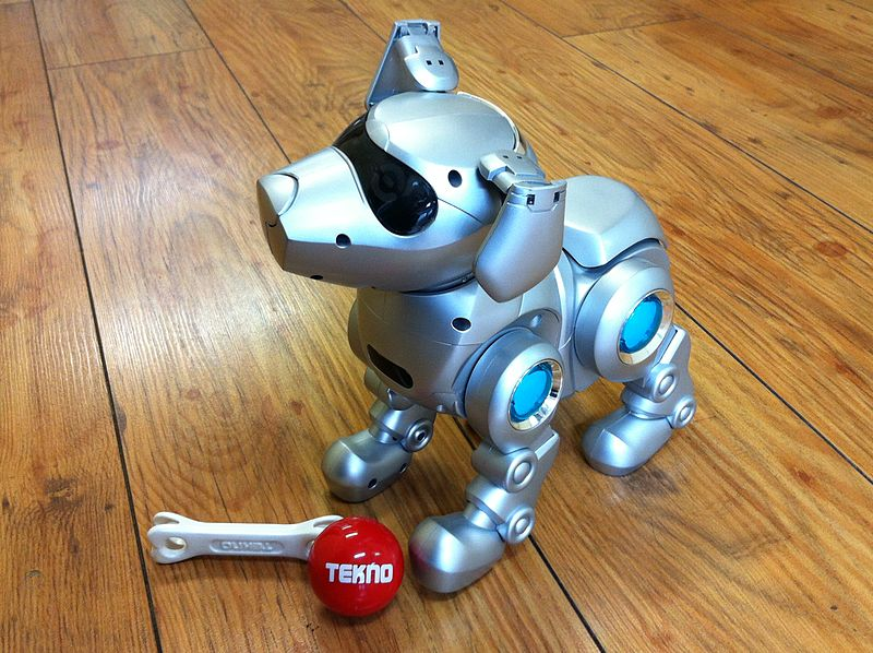 Robot Dog: Servant, Pet, or Friend?